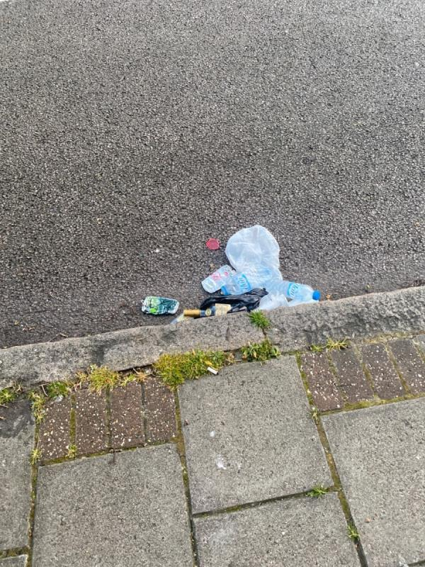 Litter -94 Emma Road, London, E13 0DR