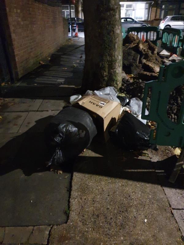 rubbish dumped on pavement by tree -61 Lansdown Road, Upton Park, E7 8NF