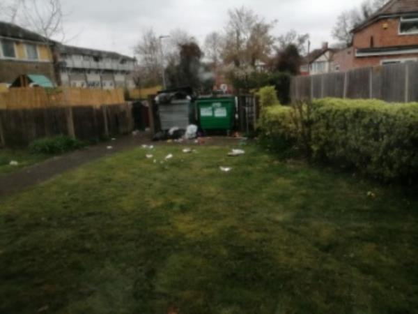 Bins been overfull for ages and now the foxs have been at the food left outside our bins by house next door right outside my kitchen window -67 Stanhope Road, Reading, RG2 7HW