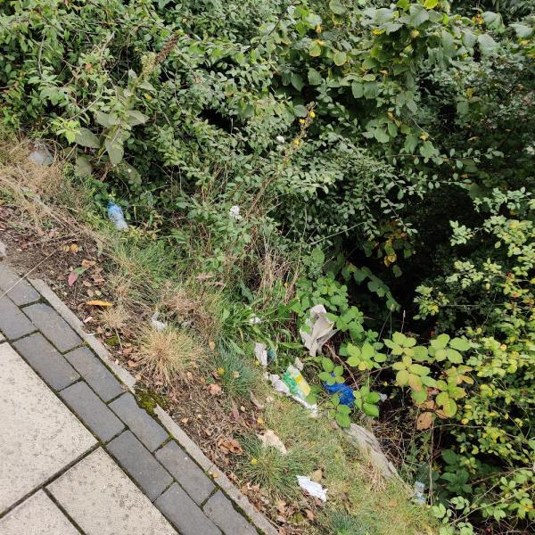 Litter everywhere a13 towards beckton-Woolwich Manor Way Newham Way (Stop BS), London E6 6HS, UK