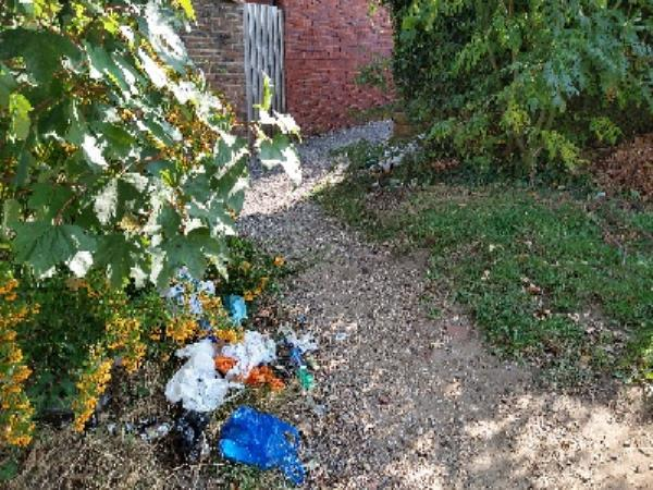 rubbish dumped on council land by Street light 9172-6 Waldeck Street, Reading, RG1 2RE