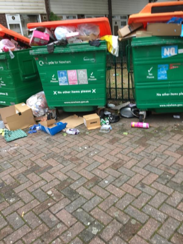Bins over flowing -89 Snowshill Road, Manor Park, E12 6BE