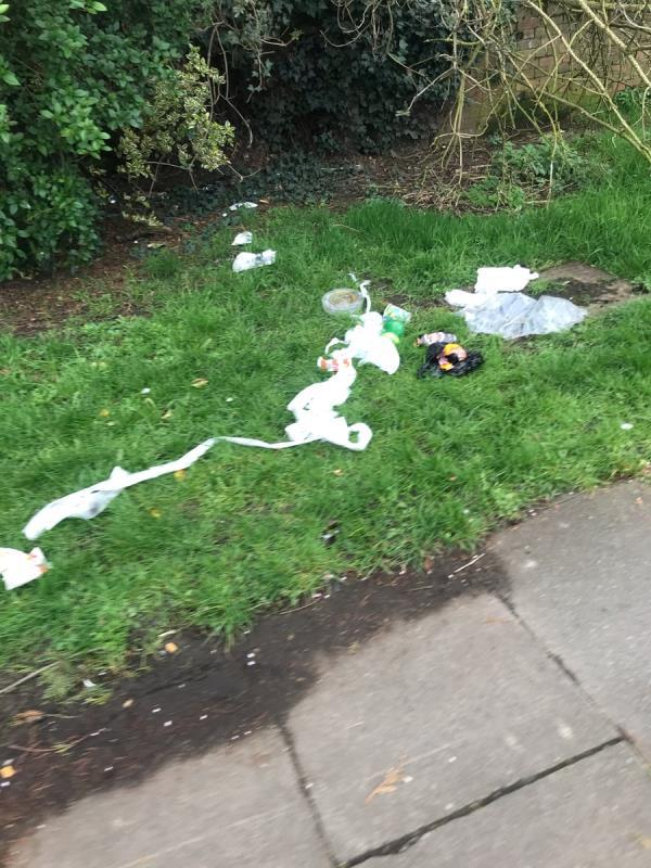 Cow Lane between Greenford Road and Oldfield Lane South ub6 needs to be litter picked-2 Ferrymead Gardens, London, UB6 9AA