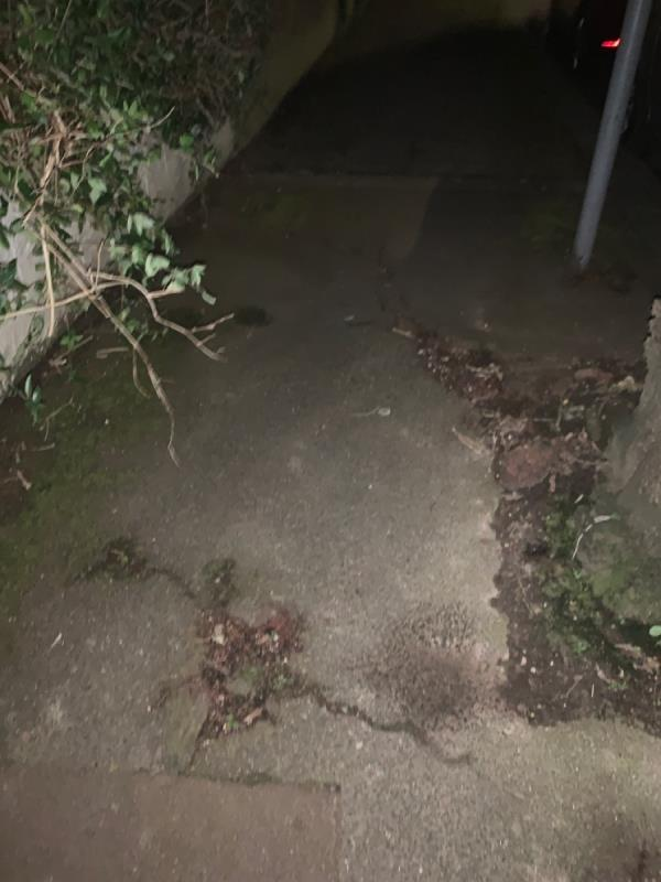 Tree root has ruptured the pavement in two spots. I have tripped over it in the dark. Impossible to pass safely in darkness. -11 Cumberland Road, London, E12 5AZ