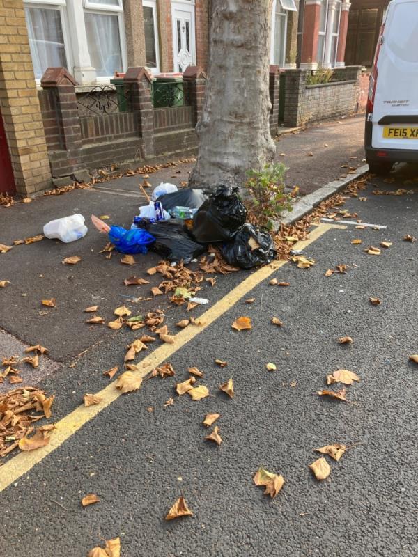 Rubbish tipped-150a Shelley Avenue, Manor Park, E12 6PX