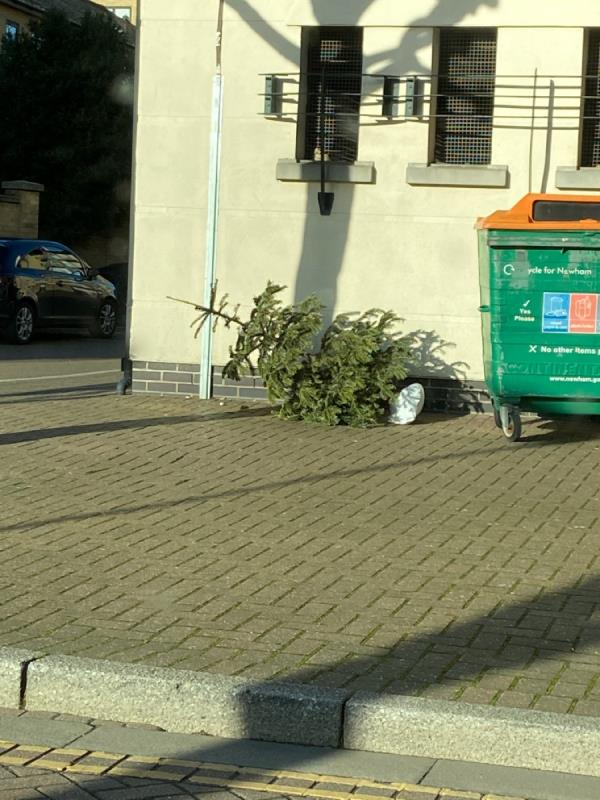 Christmas tree dumped outside Conrad House-19 Wesley Avenue, London, E16 1TD
