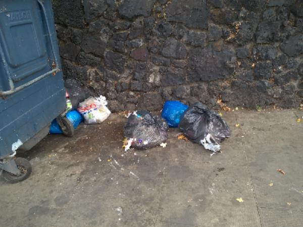 wet waste bags-126 Church Road, Manor Park, E12 6HA