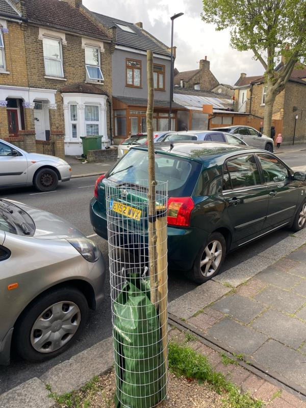 Newly planted tree vandalised, cut in half. -105 South Esk Road, Green Street East, E7 8HE