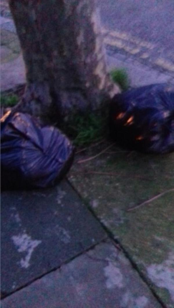 2 black bags of wastes dumped at Holborn Road junction with Westport Road -103 Holborn Road, London, E13 8PA