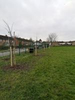 Thank you for the new trees, Allexton Gardens Park. Thanks from us all.  image 1-44 Allexton Gardens, Leicester, LE3 6LA