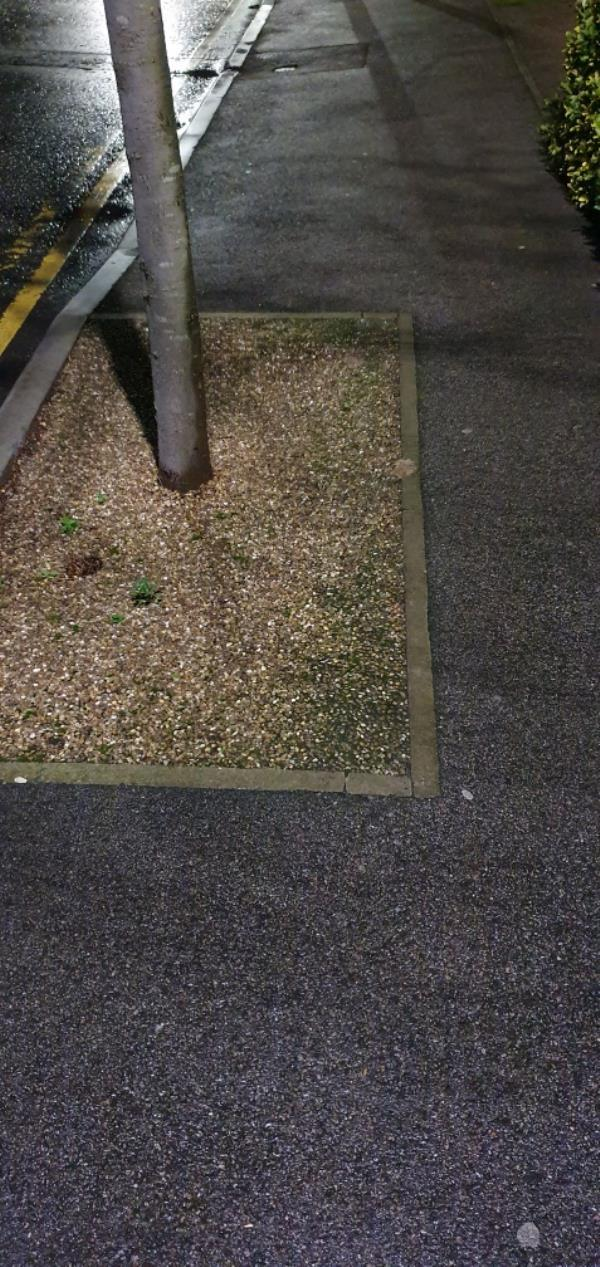 disgusting dog fouling been here for over 2 weeks. please can we have this cleaned. asap-17 Brent Road, London, E16 1PF