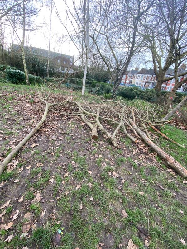 Clear up branches after tree pruning. Been left for around 9 months -St Lukes Vicarage, 46 Mayfield Road, London, N8 9WP