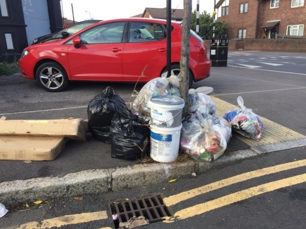 Fly tipping on the corner of Bignold Road and Dames Road. Discarded paint tubes, large cardboard boxes and other rubbish -37a Dames Road, London, E7 0DS